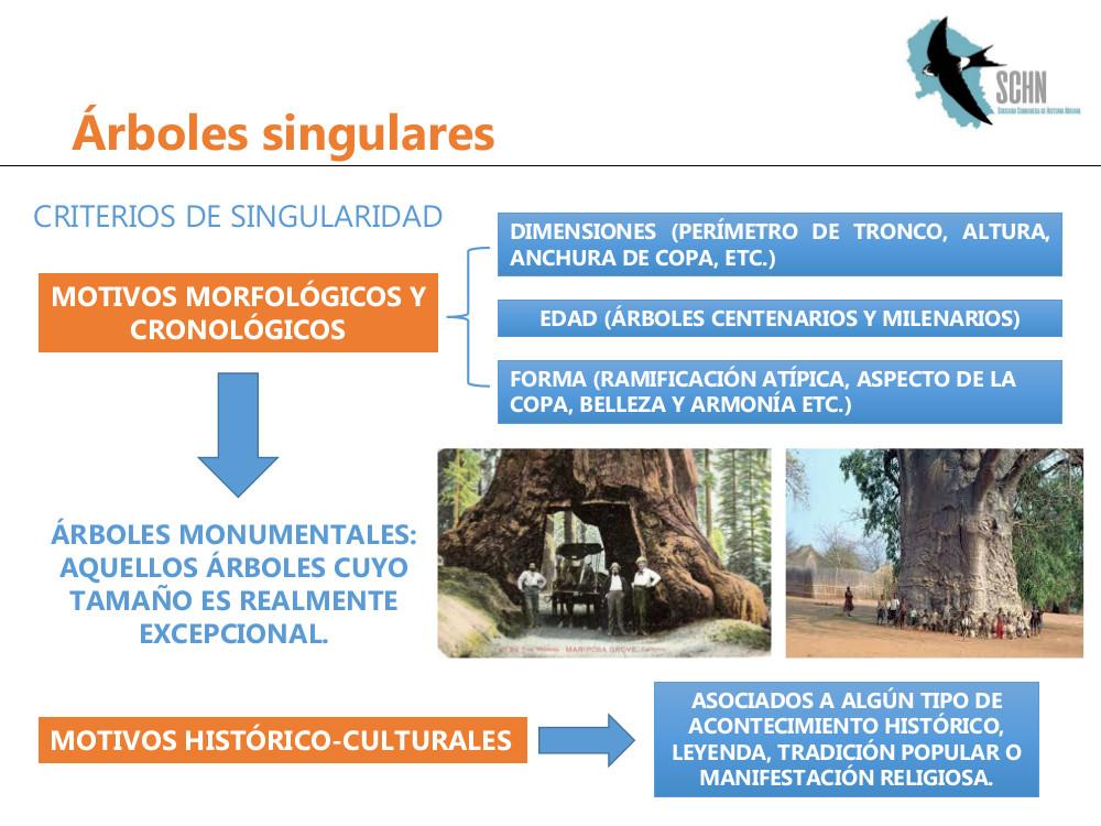 arboles singulares2