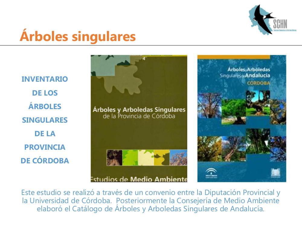 arboles singulares3