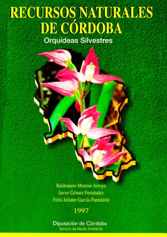 RNC2 Orquideas silvestres W