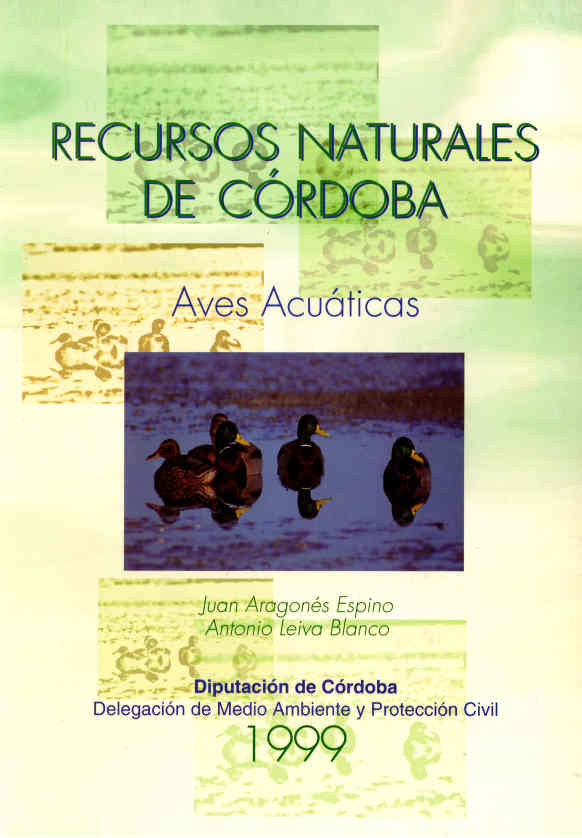 RNC4 Aves acuáticas W
