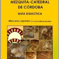 Guía didáctica de fósiles Mezquita-catedral
